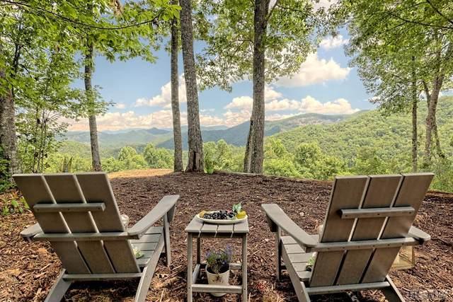 49 & 50 Waterdance Drive, Tuckasegee, NC 28783 (MLS #95895) :: Berkshire Hathaway HomeServices Meadows Mountain Realty