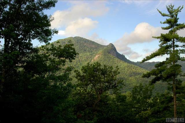 Lot 13 Streamside Drive, Cashiers, NC 28717 (MLS #95953) :: Berkshire Hathaway HomeServices Meadows Mountain Realty
