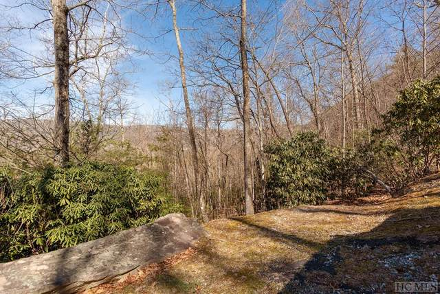595 Pine Forest Road, Sapphire, NC 28774 (MLS #95976) :: Pat Allen Realty Group