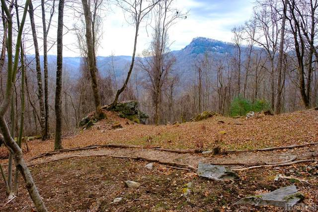 Lot 60A Elk Hair Drive, Tuckasegee, NC 28783 (MLS #95994) :: Berkshire Hathaway HomeServices Meadows Mountain Realty