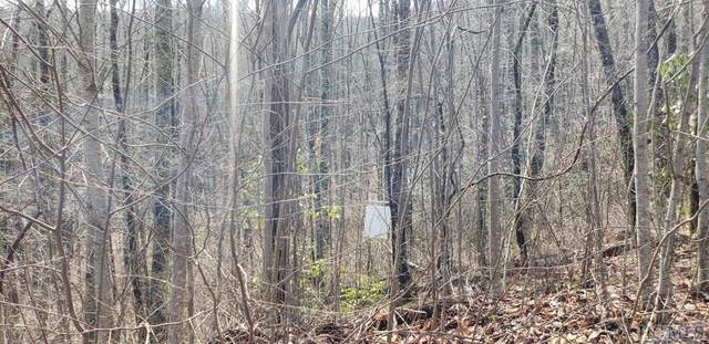 Lot 71 Tbd, Cullowhee, NC 28723 (MLS #96014) :: Berkshire Hathaway HomeServices Meadows Mountain Realty