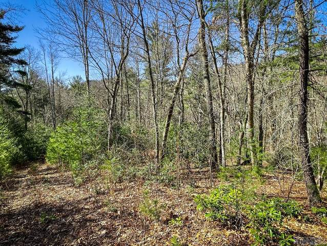 Lot 12 Tbd, Cullowhee, NC 28723 (MLS #96016) :: Berkshire Hathaway HomeServices Meadows Mountain Realty