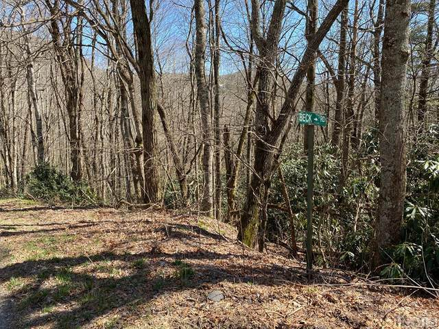 TBD Miller Road, Scaly Mountain, NC 28775 (MLS #96033) :: Pat Allen Realty Group
