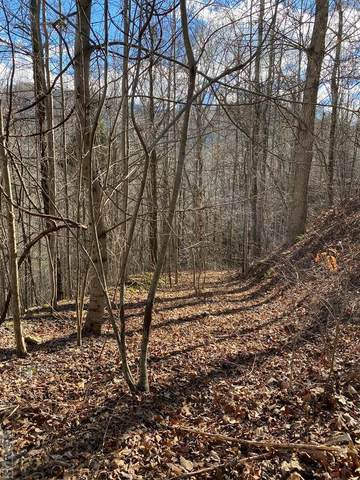 137 Birdymay Drive, Tuckasegee, NC 28783 (MLS #96042) :: Berkshire Hathaway HomeServices Meadows Mountain Realty