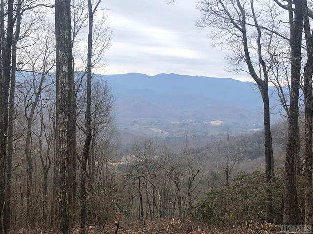 N/A Natural Bridge Road, Scaly Mountain, NC 28775 (MLS #96073) :: Pat Allen Realty Group