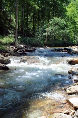 Lot 5 Waterdance Drive, Tuckasegee, NC 28783 (MLS #96080) :: Berkshire Hathaway HomeServices Meadows Mountain Realty