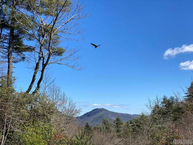 11 Mountain Meadow Lane, Cashiers, NC 28717 (MLS #96113) :: Berkshire Hathaway HomeServices Meadows Mountain Realty