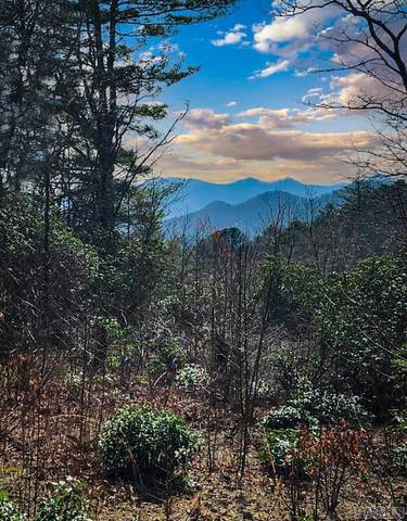 TBD Old Bear Ridge Road, Scaly Mountain, NC 28775 (MLS #96118) :: Berkshire Hathaway HomeServices Meadows Mountain Realty
