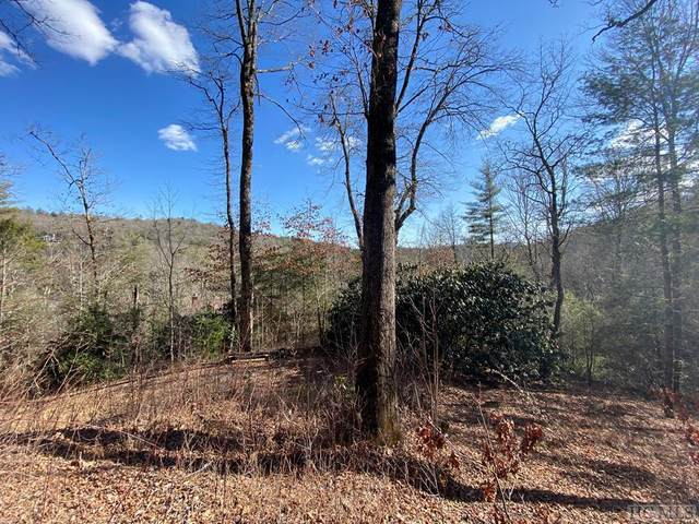 19 Laurel Branch, Highlands, NC 28741 (MLS #96125) :: Pat Allen Realty Group