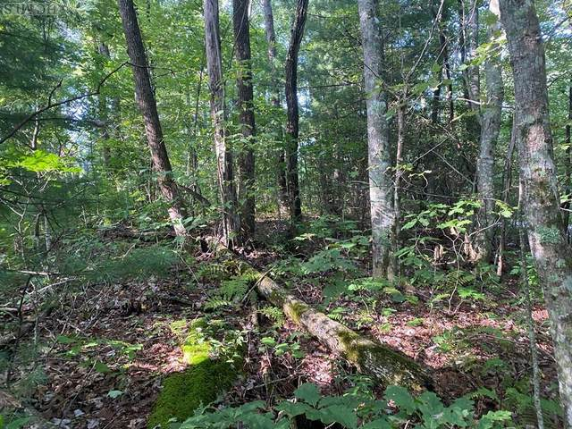 Lot 17 Whitewater Ridge Road, Sapphire, NC 28774 (MLS #96153) :: Berkshire Hathaway HomeServices Meadows Mountain Realty