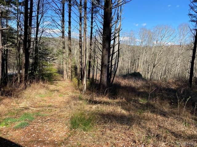 Lot 7 Receptive Drive, Glenville, NC 28723 (MLS #96157) :: Berkshire Hathaway HomeServices Meadows Mountain Realty