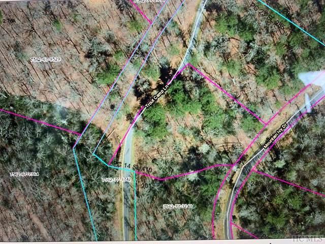 E198 Trout Camp Lane, Cashiers, NC 28717 (MLS #96184) :: Pat Allen Realty Group