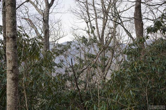 TBD Buck Knob Road, Scaly Mountain, NC 28775 (MLS #96204) :: Pat Allen Realty Group