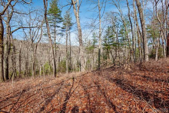 Lot 77 Long Lake Trail, Sapphire, NC 28774 (MLS #96244) :: Pat Allen Realty Group