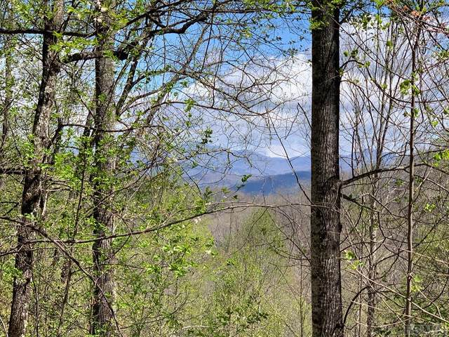 Lot 65 Pilot Knob Road, Glenville, NC 28736 (MLS #96254) :: Pat Allen Realty Group