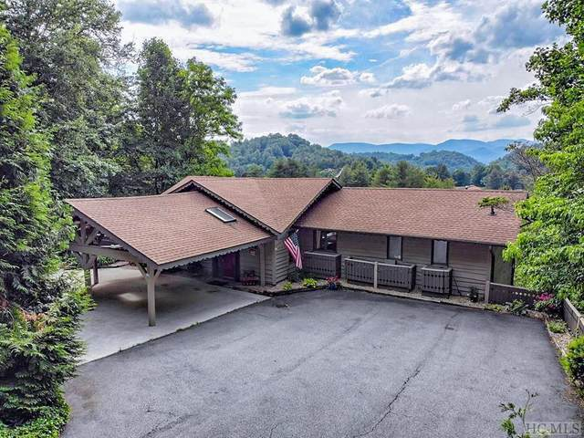 294 Ridgepole Drive, Sky Valley, GA 30537 (#96299) :: BluAxis Realty