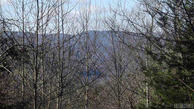 NA Chestnut Mountain Road, Scaly Mountain, NC 28775 (MLS #96329) :: Berkshire Hathaway HomeServices Meadows Mountain Realty