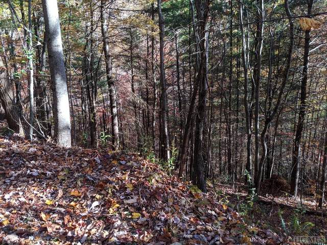 Lot 84 Sky High Drive, Sky Valley, GA 30537 (#96366) :: BluAxis Realty