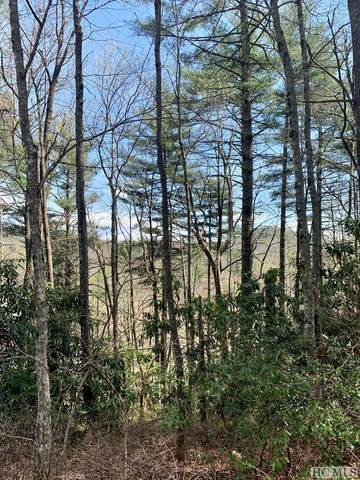 LOT 10 Heritage Drive, Sapphire, NC 28774 (MLS #96370) :: Berkshire Hathaway HomeServices Meadows Mountain Realty
