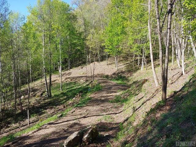 67 Waterdance Drive, Tuckasegee, NC 28768 (MLS #96375) :: Berkshire Hathaway HomeServices Meadows Mountain Realty