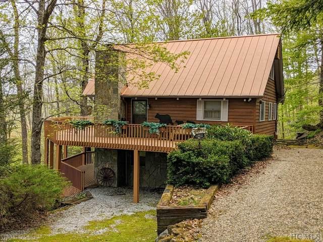 484 Raven Ridge Road, Scaly Mountain, NC 28775 (MLS #96388) :: Pat Allen Realty Group