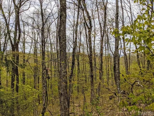 TBD Raven Ridge Road, Scaly Mountain, NC 28775 (MLS #96389) :: Pat Allen Realty Group
