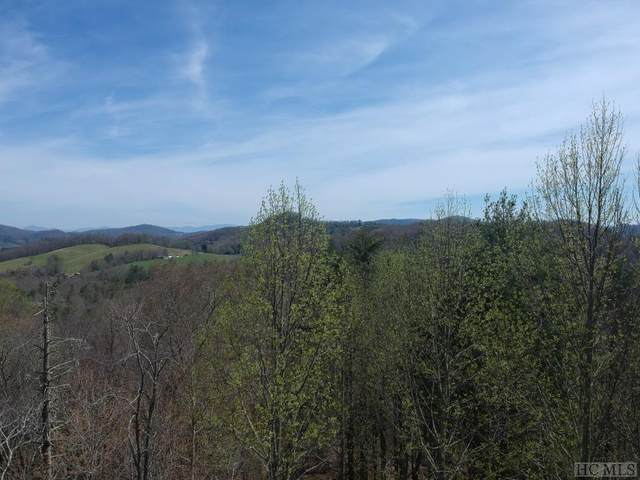 Lot 56 Springhead Trail, Cullowhee, NC 28723 (MLS #96404) :: Berkshire Hathaway HomeServices Meadows Mountain Realty