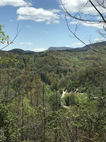 lot #15 Channel View Drive, Cullowhee, NC 28723 (MLS #96446) :: Pat Allen Realty Group