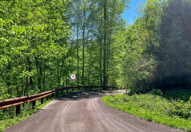 Lot 46 Wooly Bugger Drive, Tuckasegee, NC 28783 (MLS #96465) :: Berkshire Hathaway HomeServices Meadows Mountain Realty