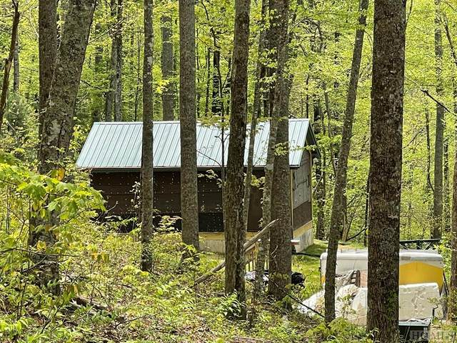 287 Buck Knob Road, Scaly Mountain, NC 28775 (MLS #96488) :: Berkshire Hathaway HomeServices Meadows Mountain Realty