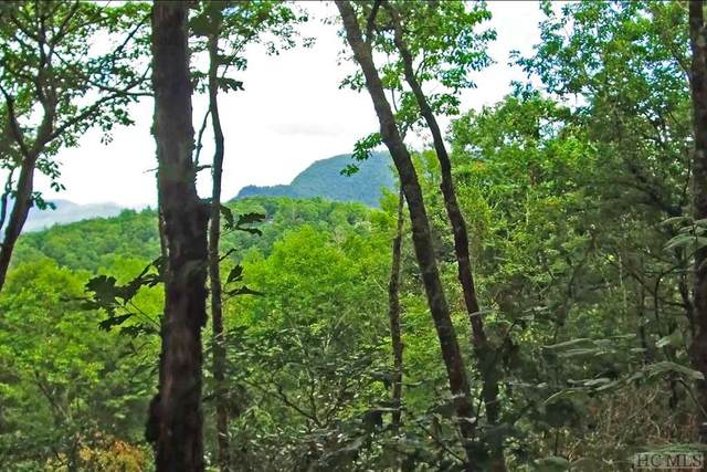 85 Double Branch Road, Highlands, NC 28741 (#96492) :: High Vistas Realty