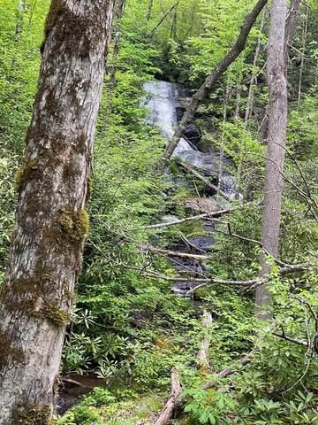 121 Bear Track Drive, Tuckasegee, NC 28783 (MLS #96592) :: Pat Allen Realty Group