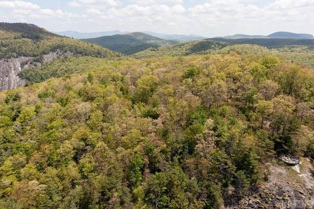 3 Cow  Rock Ridge Rd, Sapphire, NC 28774 (#96611) :: BluAxis Realty