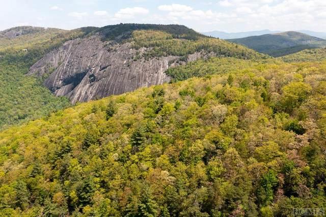 5 Cow  Rock Ridge Rd, Sapphire, NC 28774 (#96612) :: BluAxis Realty