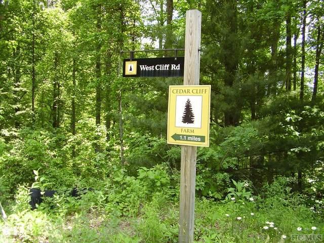Tract 4 Hunter Jim Creek Road, Cullowhee, NC 28723 (MLS #96616) :: Pat Allen Realty Group