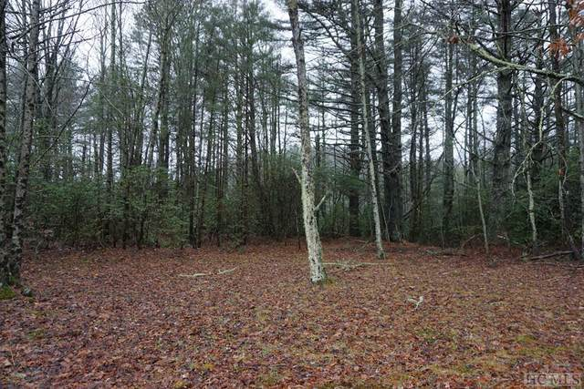 TBD Maplewood Lane, Highlands, NC 28741 (MLS #96654) :: Pat Allen Realty Group
