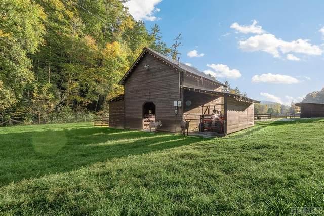 10568 Warwoman Road, Clayton, GA 30525 (MLS #96665) :: Berkshire Hathaway HomeServices Meadows Mountain Realty