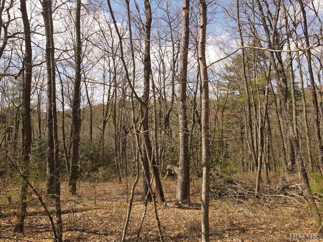 Lot 7 Dominion Road, Glenville, NC 28736 (MLS #96684) :: Berkshire Hathaway HomeServices Meadows Mountain Realty