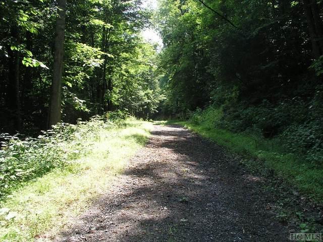 0 Brahman Lane, Cashiers, NC 28717 (MLS #96687) :: Pat Allen Realty Group