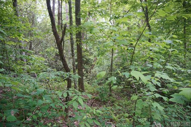 TBD Dog Mountain Road, Highlands, NC 28741 (MLS #96702) :: Berkshire Hathaway HomeServices Meadows Mountain Realty