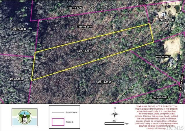 TBD Black Rock Knoll, Highlands, NC 28741 (MLS #96708) :: Pat Allen Realty Group