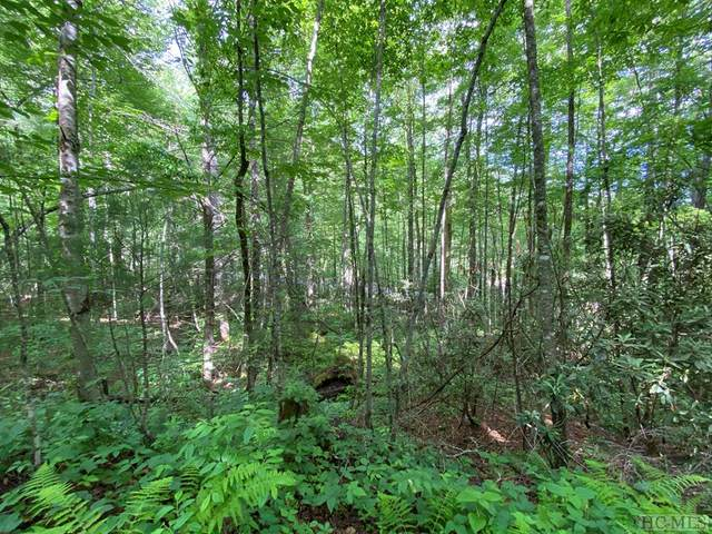 0000 Lonesome Valley Rd, Sapphire, NC 28774 (MLS #96735) :: Pat Allen Realty Group