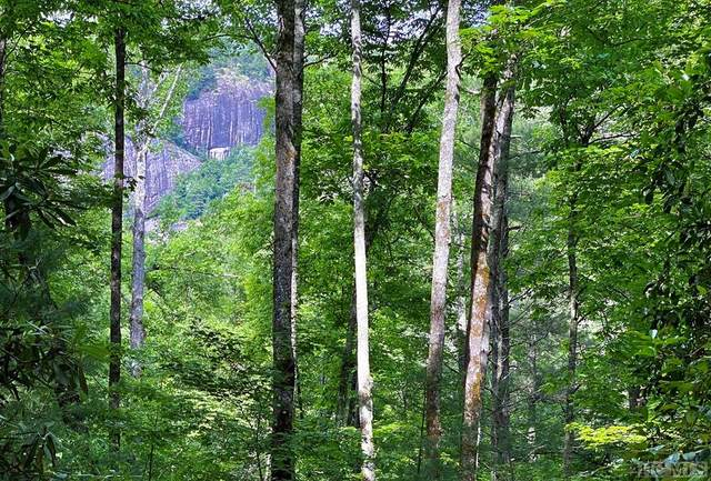000 Lonesome Valley Rd, Sapphire, NC 28741 (MLS #96740) :: Berkshire Hathaway HomeServices Meadows Mountain Realty