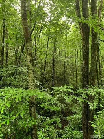 Lot 88 Garnet Rock Trail, Highlands, NC 28741 (MLS #96823) :: Berkshire Hathaway HomeServices Meadows Mountain Realty