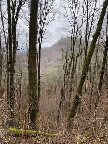 Lot53/54 Parachute Ridge, Glenville, NC 23736 (MLS #96824) :: Berkshire Hathaway HomeServices Meadows Mountain Realty