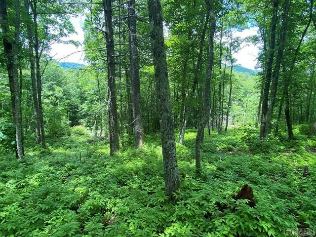 Lot 98 Blazing Star Drive, Glenville, NC 23736 (MLS #96950) :: Berkshire Hathaway HomeServices Meadows Mountain Realty