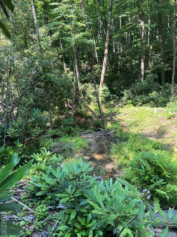 Lot 138 Buckberry Drive North, Sapphire, NC 28774 (MLS #96951) :: Berkshire Hathaway HomeServices Meadows Mountain Realty