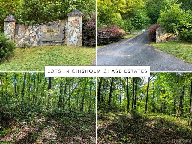 Lot 8 Bates Branch Road, Franklin, NC 28734 (#97030) :: BluAxis Realty