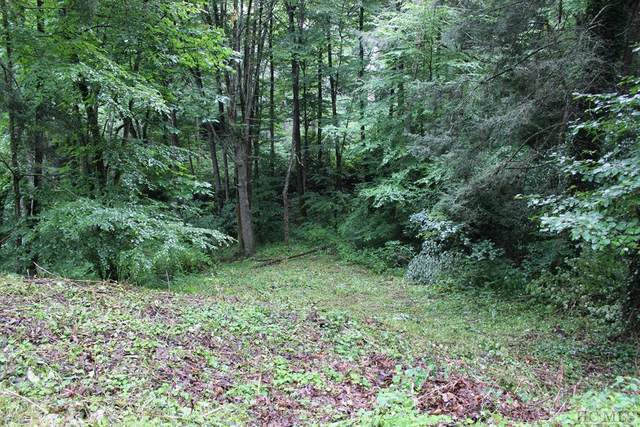 Lot 36 Harris Drive, Highlands, NC 28741 (#97055) :: BluAxis Realty
