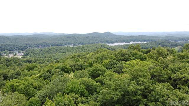P1 Lt 57 Toxaway Court, Lake Toxaway, NC 28474 (MLS #97063) :: Berkshire Hathaway HomeServices Meadows Mountain Realty